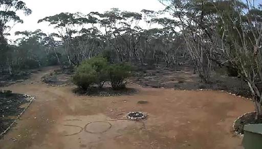地面に記した「SOS」が手掛かりに、森で行方不明の豪女性を無事救出