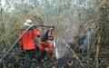 インドネシア各地で森林火災、当局が緊急警報発令