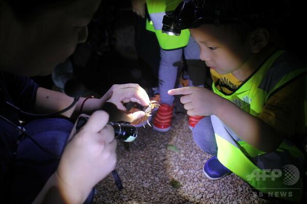 夜の植物園、妖精を探しに 上海の子どもたち