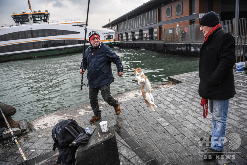 魚はいただき! トルコ・イスタンブール