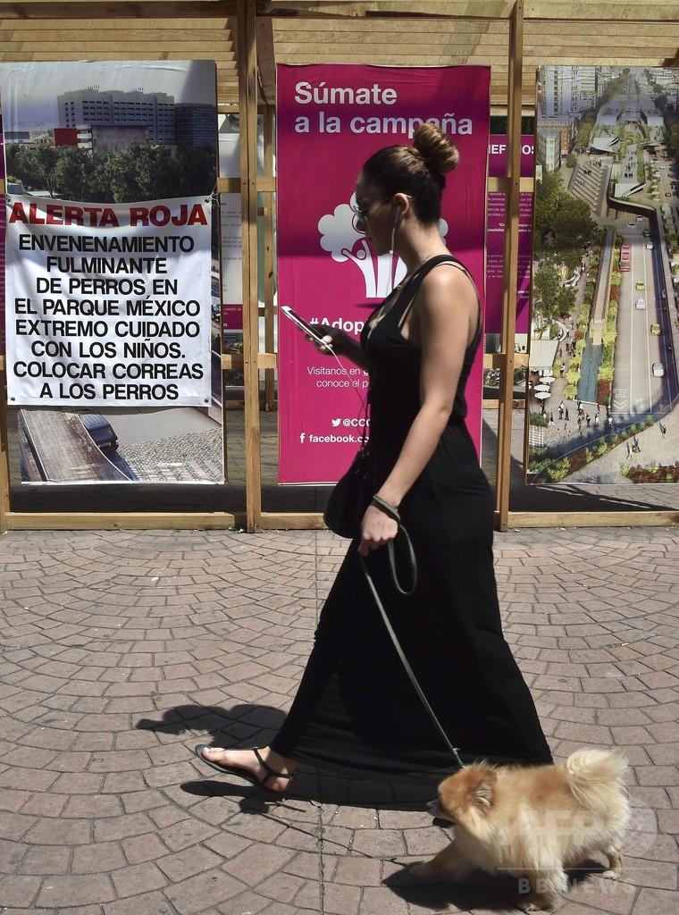 メキシコ首都に「連続殺犬鬼」?公園でペット犬の急死相次ぐ