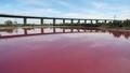 湖が鮮やかなピンク色に! 実は自然現象、豪
