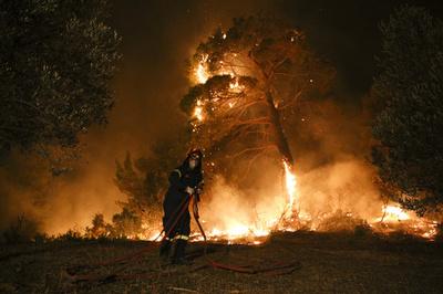 ギリシャ・アテネ近郊エビア島で大規模山火事、2か村避難