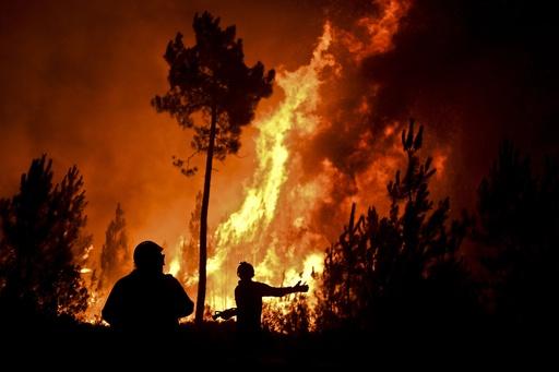 ポルトガルで森林火災、住民2000人の村が孤立状態に