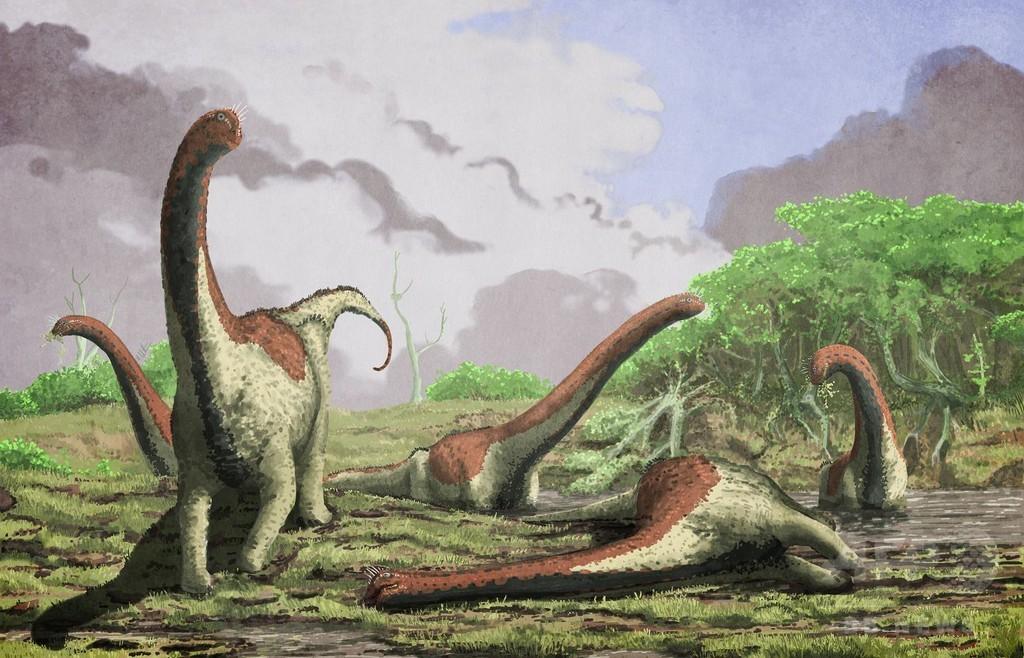 タンザニアで新種ティタノサウルスの化石発見、アフリカではまれ