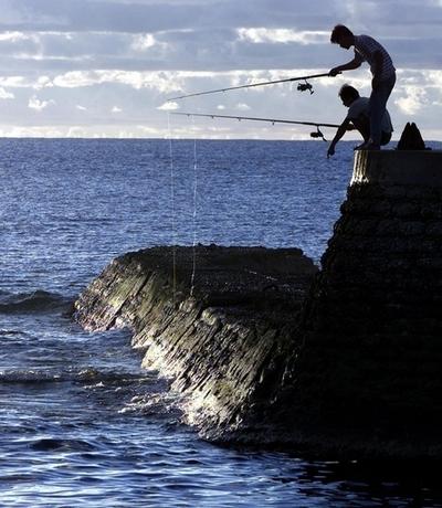 太平洋の漁業、2035年までに崩壊の恐れ 太平洋共同体が報告書