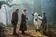 ジョニー・デップがオオカミに、映画『イントゥ・ザ・ウッズ』3月14日公開