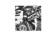 アレキサンダーワン×ザ・ウィークエンド「WANGXO」コレクション、12月12日発売