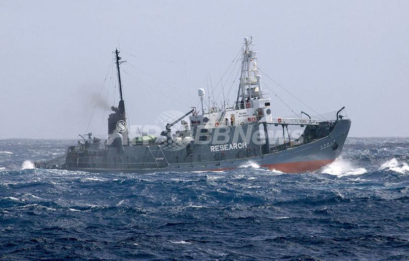 シー・シェパード、捕鯨船と今年初の小競り合い