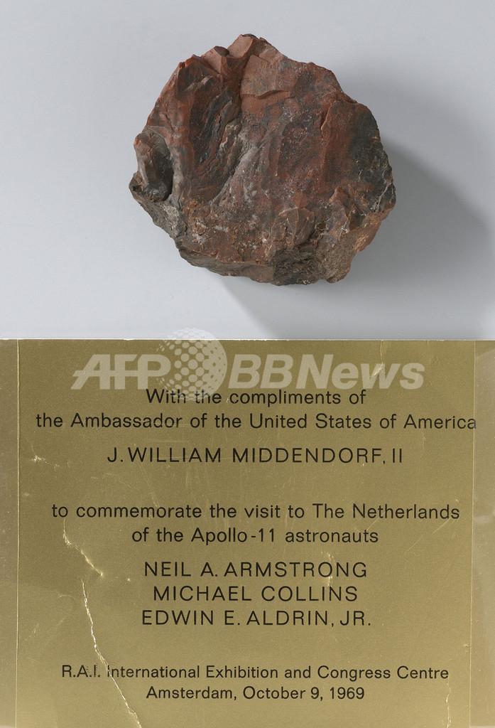 「月の石」、実は木の化石だった オランダ国立美術館