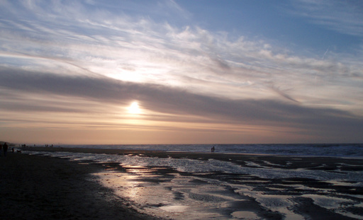 英離脱日にビーチで「さよならパーティー」 EU名産品で乾杯 オランダ