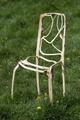 椅子が生える? 家具を「育てる」英国人アーティスト