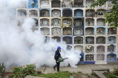 10人のジカウイルス感染を確認、ドミニカ共和国