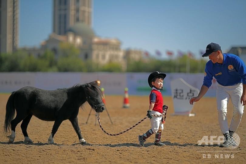 ちびっこ騎手がポニーの馬術大会に挑戦 天津