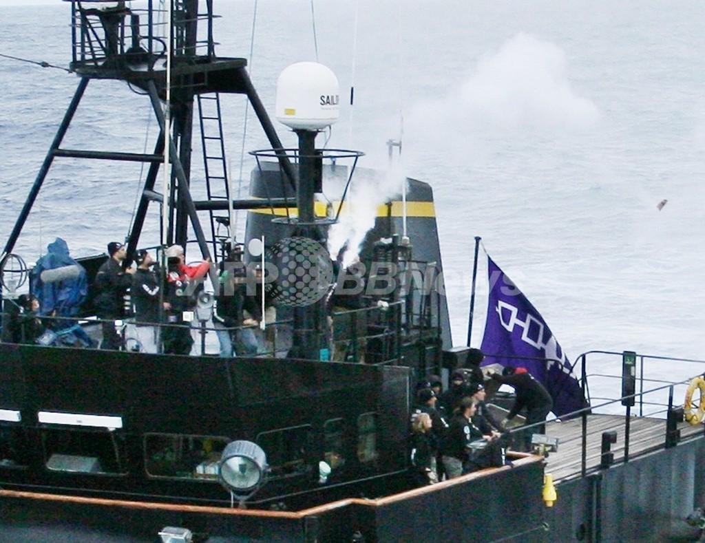 反捕鯨団体シー・シェパード、日本の捕鯨船が発砲と主張