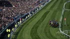 英競馬で出走予定外の馬が勝利、オッズ51倍