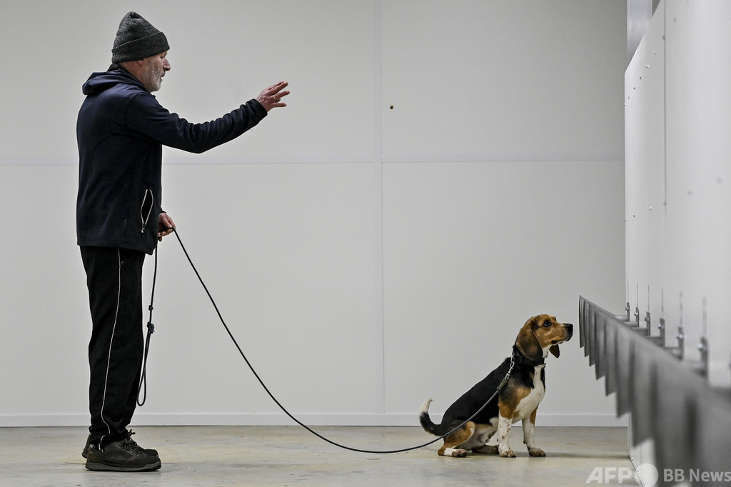 犬 散歩 コロナ の
