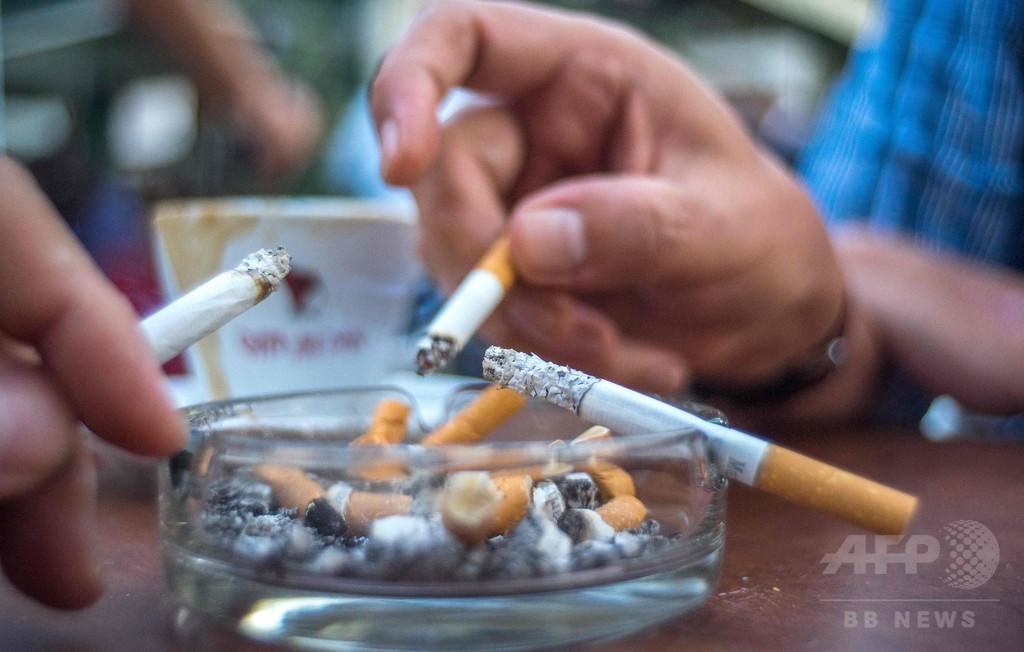 オーストリアで禁煙法求める請願に署名10万人、議会で審議へ