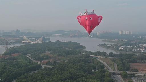 動画:空にゾウさんがふわり、国際熱気球大会開幕 マレーシア