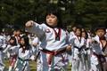 韓国でテコンドーが国技に、1万人がギネス記録に挑戦!