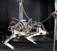 米開発のチーター型ロボット、地上走行で最高速を記録