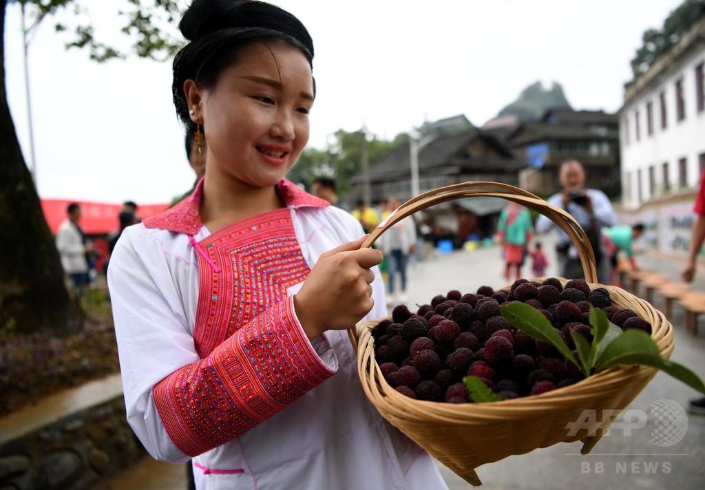 ミャオ族の村でヤマモモ祭り 貴州