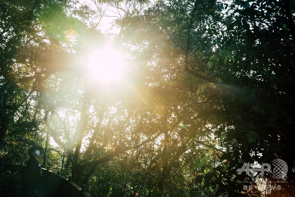 太陽光でコロナ不活性化、米政府が詳細公表