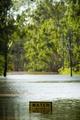 豪洪水、河川の水位1世紀ぶりの高さへ 2人死亡 4人行方不明