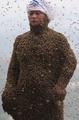 ミツバチ46万匹まとう「ハチ男」、中国