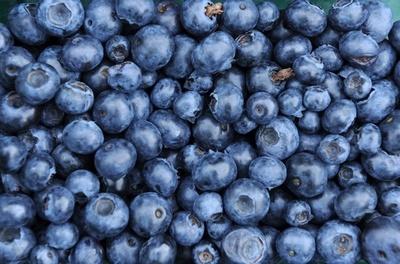 生の果物に2型糖尿病抑制効果、ジュースは逆にリスクに