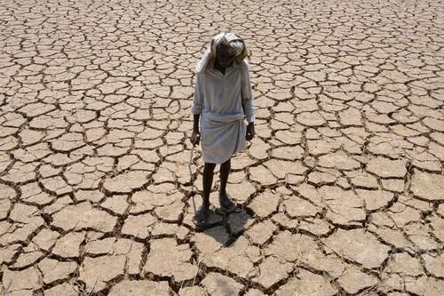 極度の貧困、気候変動で1億2200万人増える恐れ FAO