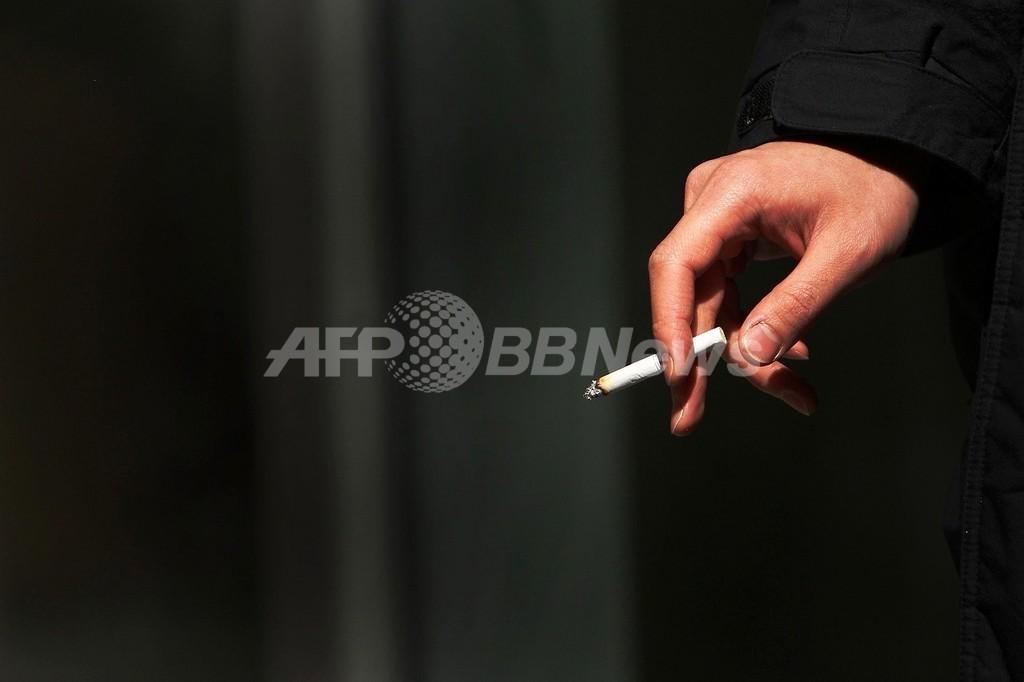 喫煙者の野菜・果物摂取、結腸がん発症リスク高める オランダ研究結果