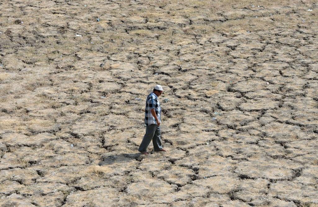 インドの熱波、死者1800人に 過去20年で最悪