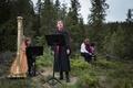 ノルウェーの森で育つ「未来図書館」、100年後に100作品出版