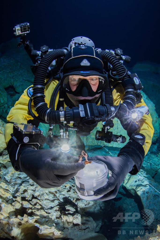 メキシコの水中洞窟、3次元VRで再現へ