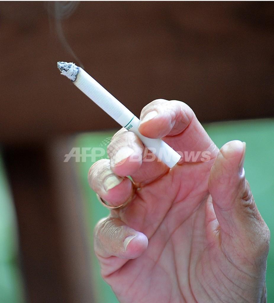 生保大手がたばこ業界に多額投資、米調査