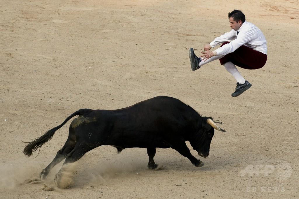 闘牛士たちの華麗な「かわし技」、コロンビア
