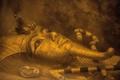 ツタンカーメン王の墓に隠し部屋示す調査結果 エジプト