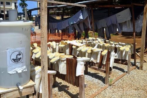 西アフリカのエボラ流行、「数か月続く恐れ」 WHO