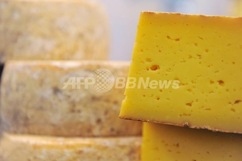 7000年前にチーズ作り、土器に証拠発見 ネイチャー