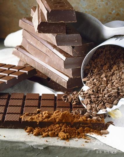 チョコレート飲食、5300年前から 南米の遺跡に最古のカカオ痕跡
