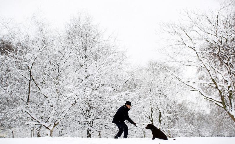 欧州西部で約20年ぶりの豪雪