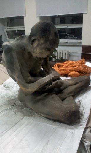 200歳の「即身仏」発見 モンゴル