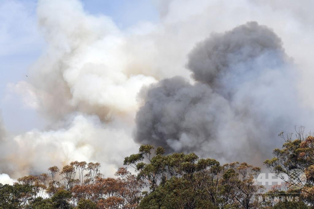 豪で「メガ火災」発生 強風で森林火災同士が合体