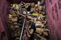 【AFP記者コラム】街角の死体、地獄絵の拘置所──フィリピン「麻薬撲滅戦争」の実態