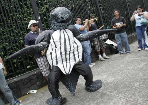 コスタリカ、大統領官邸前でカメ姿で歌う男性