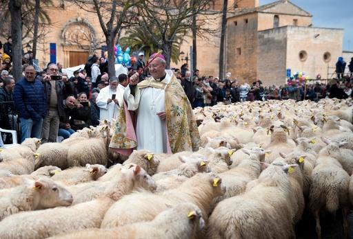 犬や馬に神の祝福を、動物の守護聖人「聖アントニオ」の日 スペイン・マヨルカ島