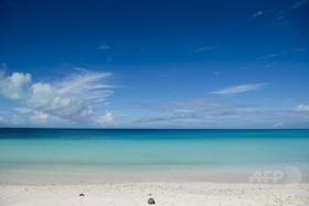 海水の酸素量、過去55年で2%減少 研究