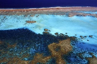 ニューカレドニア、さんご礁の世界遺産登録を目指す