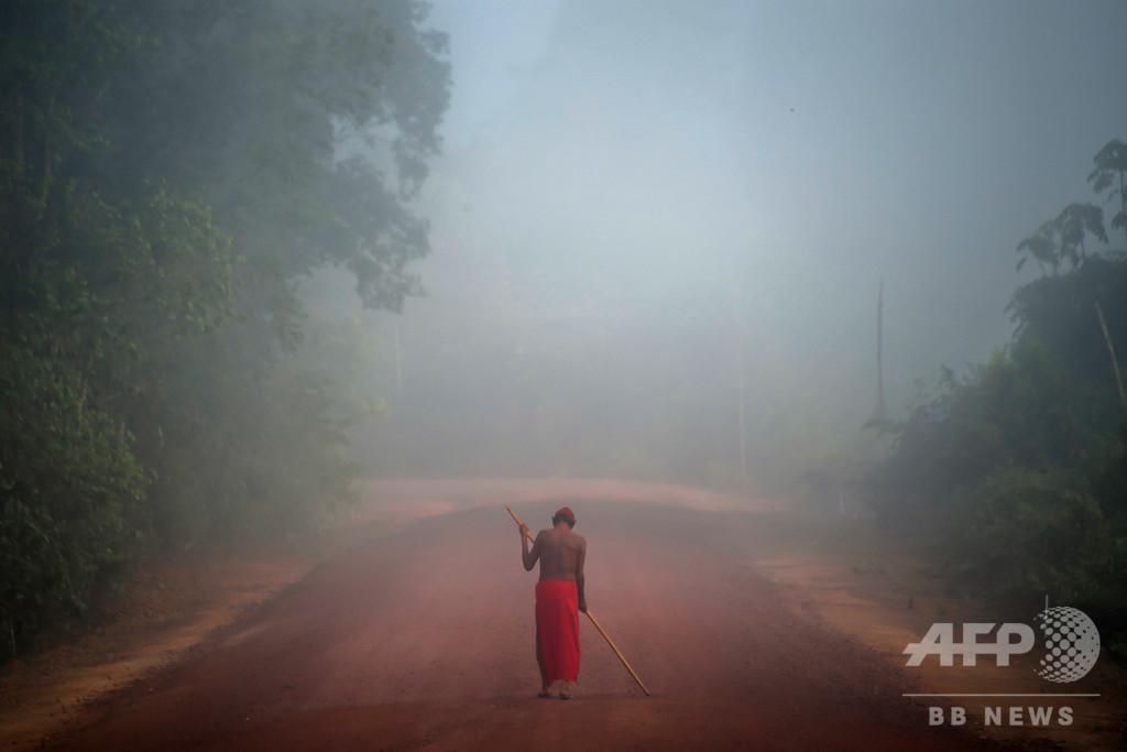 ブラジル先住民首長の遺体、掘り起こして検視へ 国連は殺人として非難